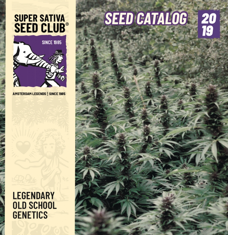 Super Sativa Seed Club, the second seed bank of the world